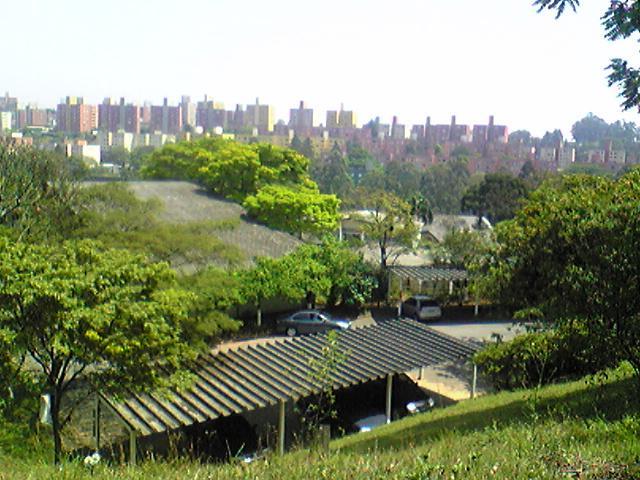 ブラジルのサンパウロ日本人学校のあれこれ