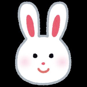 なぜウサギはゲージを噛むのか?その理由と対処法をまとめてみました