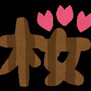 花見の起源と由来は?現代の花見事情とマナー4選!