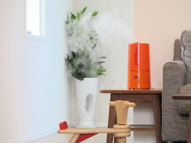 知らぬ間に、加湿器の汚れが大変なことに!汚れがつきやすい振動板掃除方法