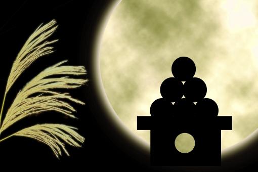 お月見と言えば十五夜ですが、十三夜、十六夜、十七夜があるのを知っていますか?