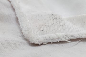 布などについたカビの取り方をご紹介!カビの原因と除去方法とは?